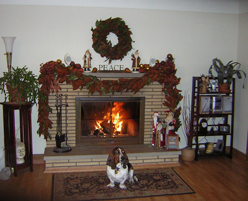 Beulah Mae with her gorgeous self posing in front of the fire.